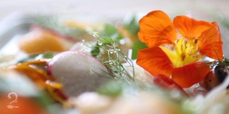Flores para Enfeitar